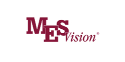 Cornerstone Insurance: MESVision